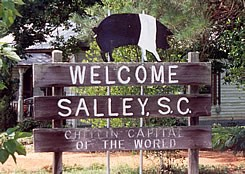 Salley, SC Furnace & Air Conditioning Installation, Repair & Maintenance